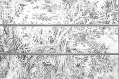 trees.pen&ink