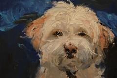 Molly-Baker_dog